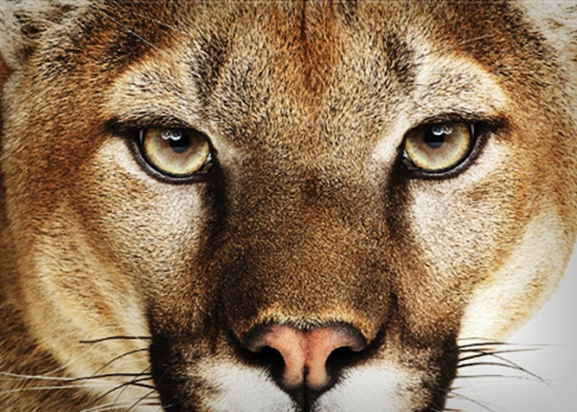 Mountain Lion Available Today From the Mac App Store